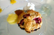 Strawberry coconut scones by Lady ML